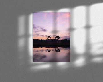 Dubbele boom reflectie met spectaculaire paarse lucht van FHoo