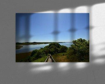 Baaber Bek -  Moritzburg - Am Horizont der Fliegerberg von GH Foto & Artdesign