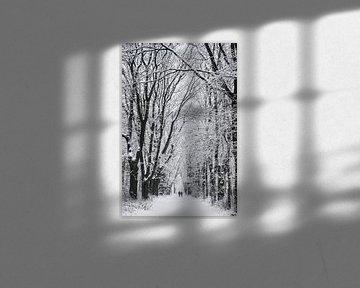Winter landschap in Nederland op de Utrechtse heuvelrug van Peter Haastrecht, van