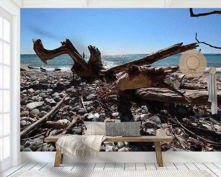 Beispiel fototapete: Baumstamm am Strand -  Stubbenkammer von GH Foto & Artdesign