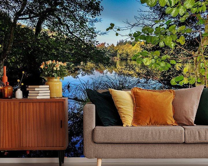 Beispiel fototapete: Hertasee im Nationalpark Jasmund von GH Foto & Artdesign