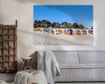 weiß-blau-braune Strandkörbe in Binz, Rügen von GH Foto & Artdesign