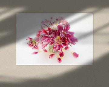 Historische Tulpen in Vase, Stillleben von Cora Koning