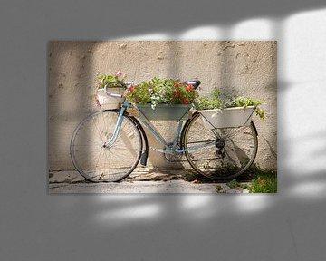 Fahrrad mit Blumen in der Provence von Everards Photography