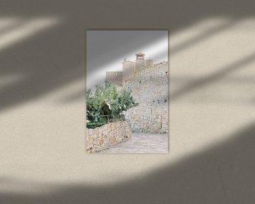Pals | Mittelalterliches Dorf in Spanien | Kaktus mit alter Steinmauer von Milou van Ham