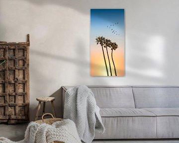 Palmen & Zonsondergang   Panorama van Melanie Viola