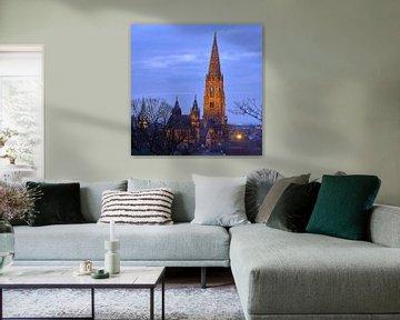 Freiburger Münster von Patrick Lohmüller