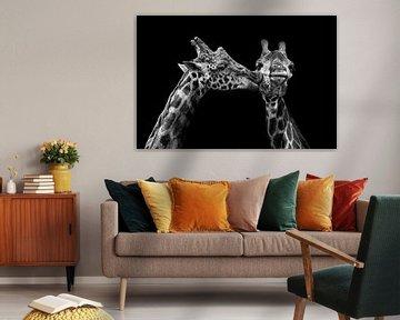 Romantische Giraffen in Schwarz und Weiß von Chihong