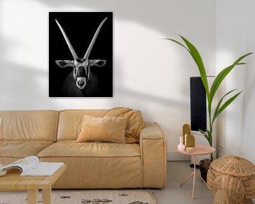 Afrikanische Oryx (Antilope) von Chihong
