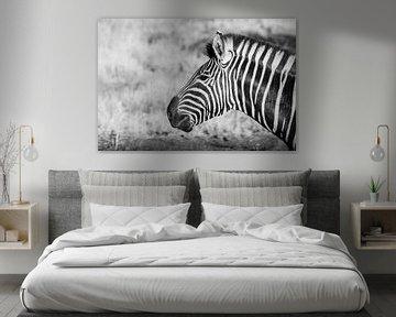 Zebra || Safari, Kunstdruck, Südafrika || Kruger National Park von Suzanne Spijkers
