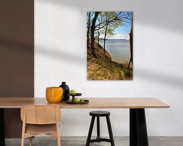 Hochufer bei Lietzow, Großer Jasmunder Bodden von GH Foto & Artdesign