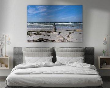 Buhnen in der Brandung, Insel Hiddensee von GH Foto & Artdesign