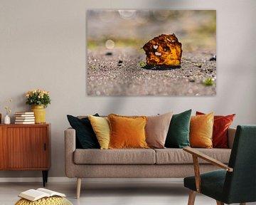 Herzblatt von GH Foto & Artdesign