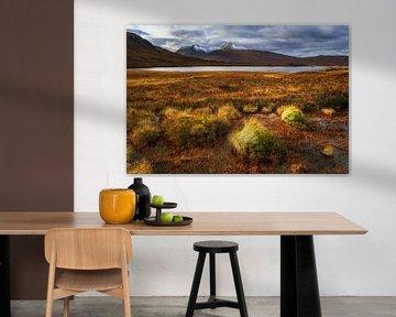 Lichtstimmung im Rannoch Moor von Daniela Beyer