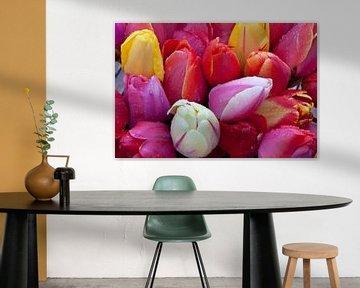 Tulpenverzameling van Cora Koning