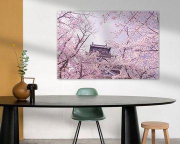 Château parmi les cerisiers en fleurs sur Mickéle Godderis