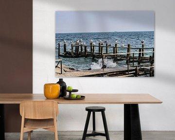 Möwen am Bootssteg auf Vitt, Rügen von GH Foto & Artdesign