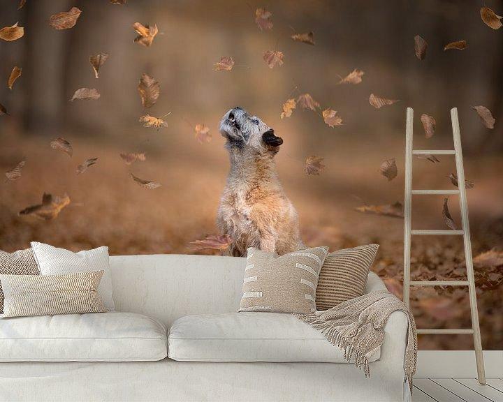 Beispiel fototapete: Fallende Blätter von GoWildGoNaturepictures
