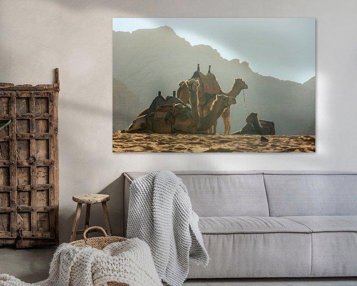 Impression: Chameaux dans le désert du Jourdain sur Bastiaan Buurman