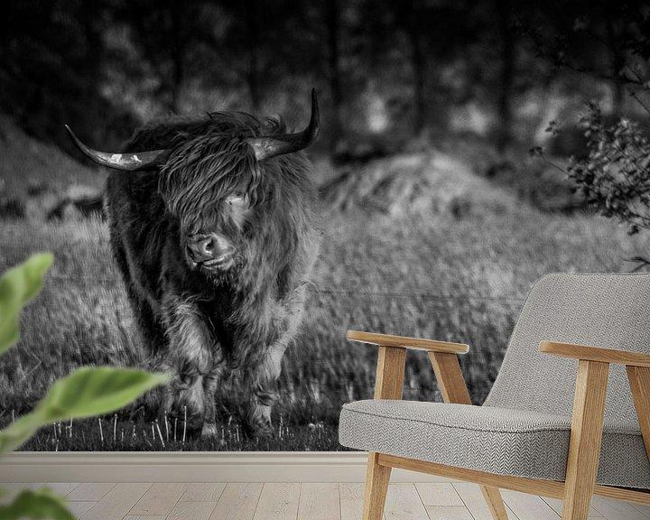 Sfeerimpressie behang: Schotse Hooglander B&W van Kuifje-fotografie