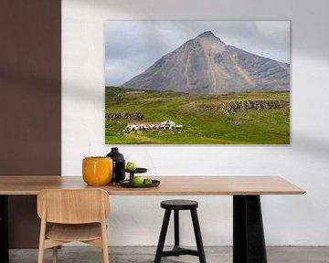boerderij en vulkaan op Vatnsness, IJsland van Jan Fritz