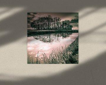 Perfekte Reflexion in Schwarz und Weiß von Roland's Foto's