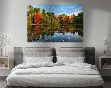 Reflexion Herbstfarben von Ad van Kruysdijk