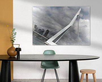 Le pont Erasmus sur Ruud de Soet