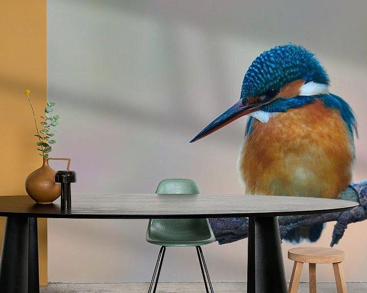 Beispiel fototapete: Eisvogel - ihr erster Frost von IJsvogels.nl - Corné van Oosterhout