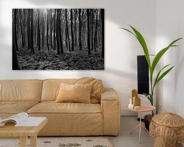 Bäume von Marco van de Pol