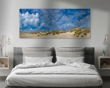 jonge duinen op Terschelling, Nederland van Jan Fritz