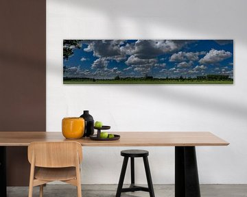 Holländische Wiesen mit Wolkenpanorama von Tessa Louwerens