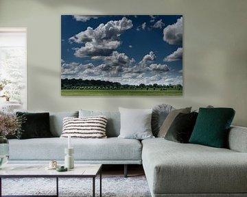 Nederlands weiland met wolkenlucht van Tessa Louwerens