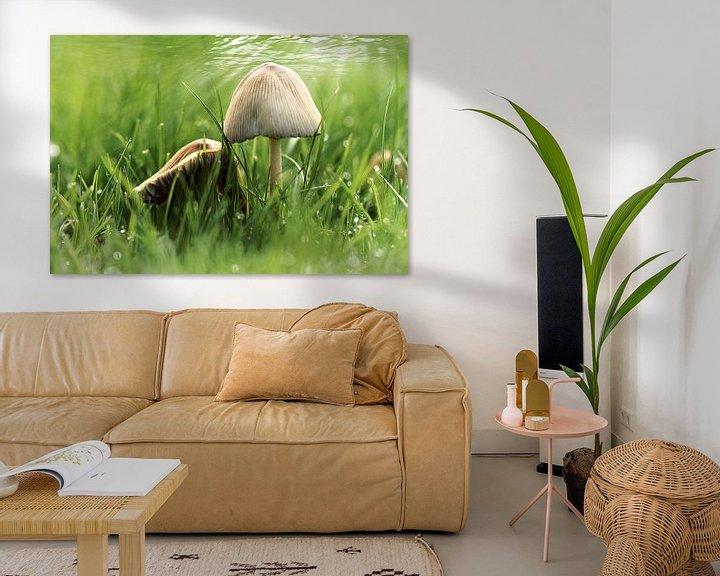 Sfeerimpressie: paddenstoeltjes in het gras van Yvonne Blokland