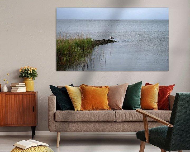 Impression: Mouette dans le fjord sur BVpix
