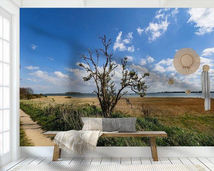 Beispiel fototapete: Entlang der Küste bei Glutzow, Insel Rügen von GH Foto & Artdesign