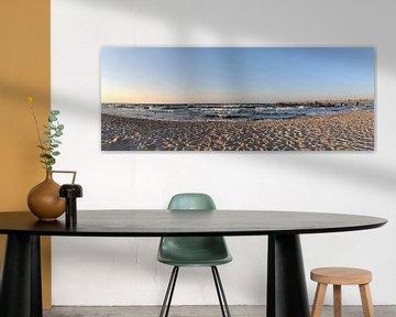 Meeuwen op het noordelijk strand in Göhren, eiland Rügen van GH Foto & Artdesign