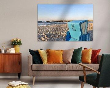 Strandkorb und Möwen am Norstrand in Göhren auf Rügen von GH Foto & Artdesign