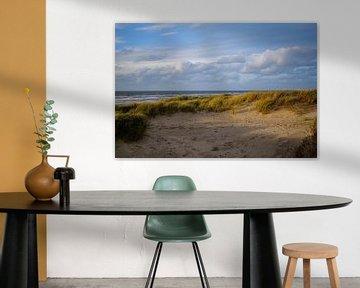 Nederlands duinlandschap met zeezicht van Frank van Hulst