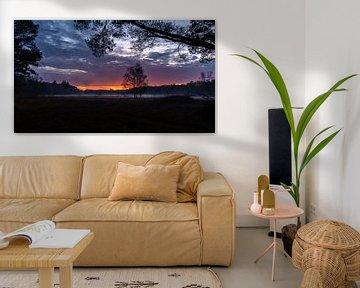Zonsondergang boven Hilversums Wasmeer van Andrea de Jong