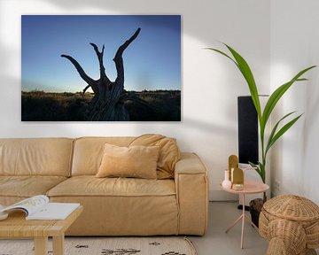 Silhouet van dode boom van Jan-Thijs Menger