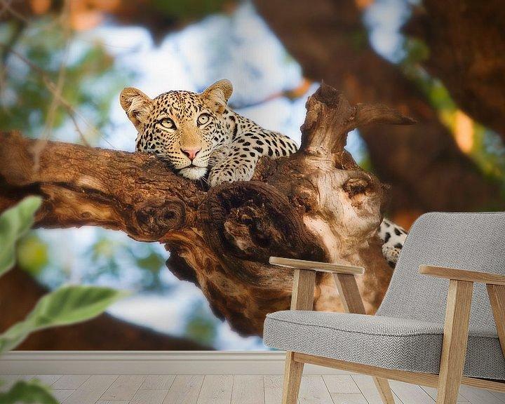 Sfeerimpressie behang: Luipaard in boom van Nicole Jagerman