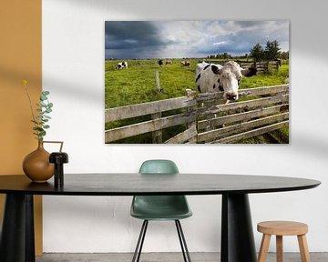 Kühe auf der Wiese in den Niederlanden von Peter de Kievith Fotografie