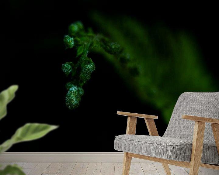 Sfeerimpressie behang: Een close-up foto van de punt van een varenblad in knop van Erna Böhre