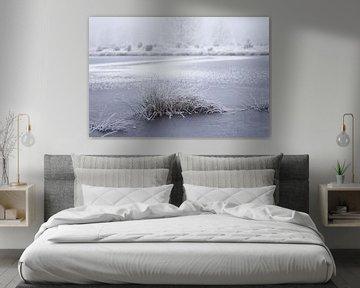 bevroren meer omringt met heide van Karijn   Fine art Natuur en Reis Fotografie