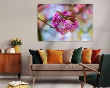 rosa Blüte Blumen auf kleinen Zweig mit blauem Himmel im Hintergrund von Margriet Hulsker