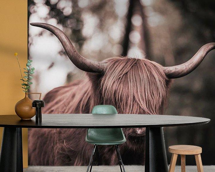 Sfeerimpressie behang: Schotse Hooglander van Steven Dijkshoorn