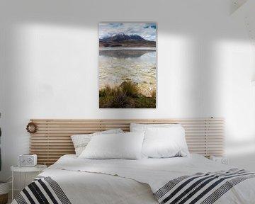 Das Andengebirge von seiner schönsten Seite von Jelmer Laernoes
