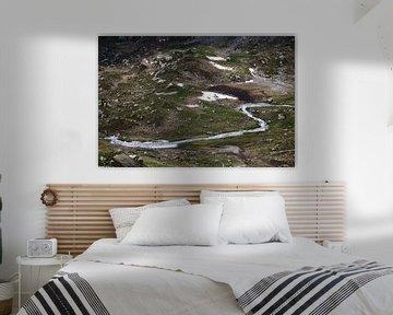 Alpenweide van Jan-Thijs Menger