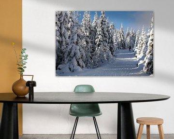 Winterlandschap van t.ART